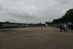 public-activities-germany-009